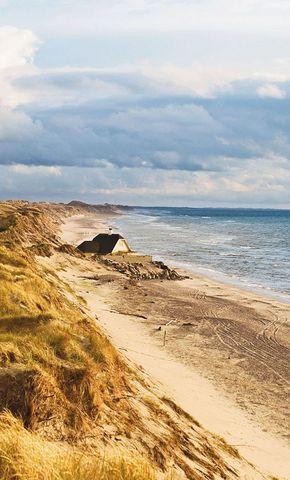 Klitplantage dunes, Skagen, Denmark.