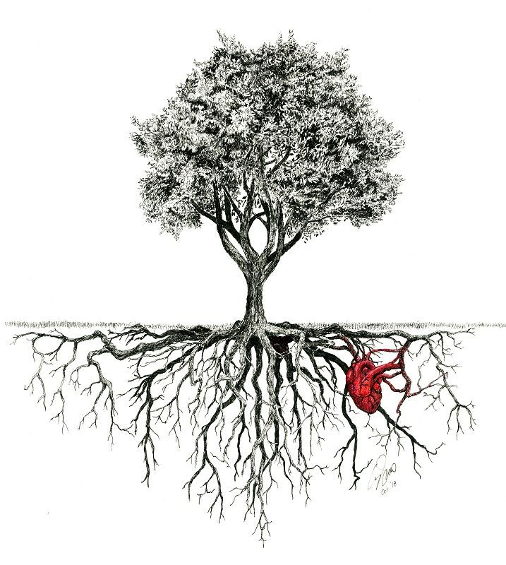 Geworteld Inkt Met Kleur Wetcanvas In 2020 Tree Roots Tattoo Roots Drawing Tree Tattoo Designs