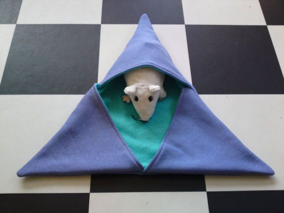 Driehoek inkruiper