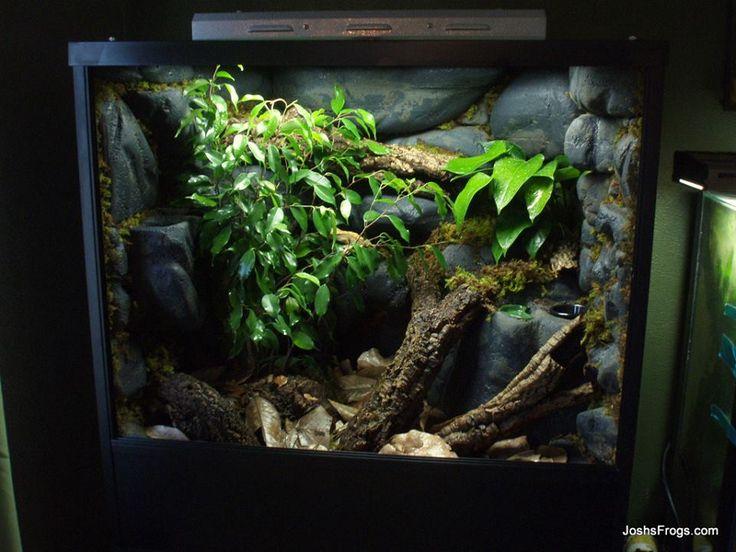 crested gecko vivarium planted josh 39 s frogs pl vivarium pinterest vivarium crested. Black Bedroom Furniture Sets. Home Design Ideas