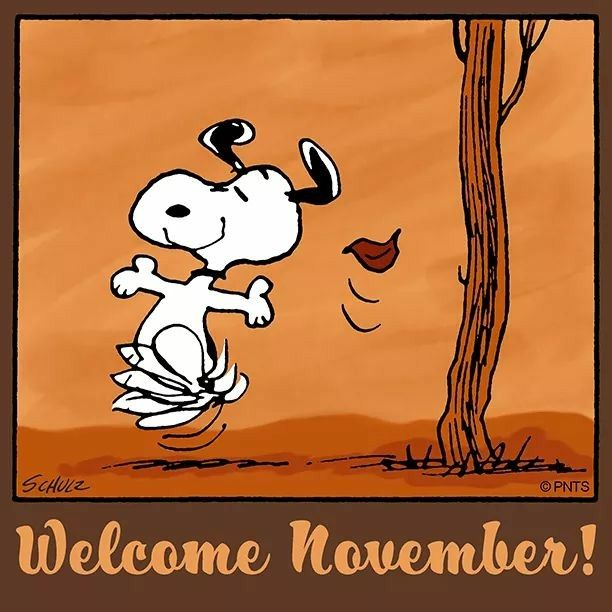 SNOOPY~ WELCOME NOVEMBER!