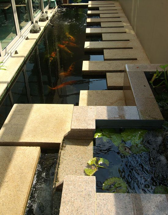 17 best ideas about koi pond design on pinterest pond for Contemporary koi pond design
