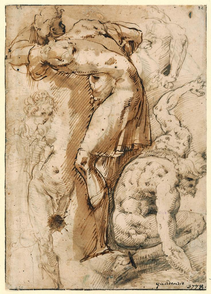 Giovanni Battista Crespi, dit le Cerano (1573-1632).  Etudes variées de figures masculines ; étude de buste féminin (recto),  Lavis et encre bruns - 20 x 14,3 cm,  Munich, Staatliche Graphische Sammlung