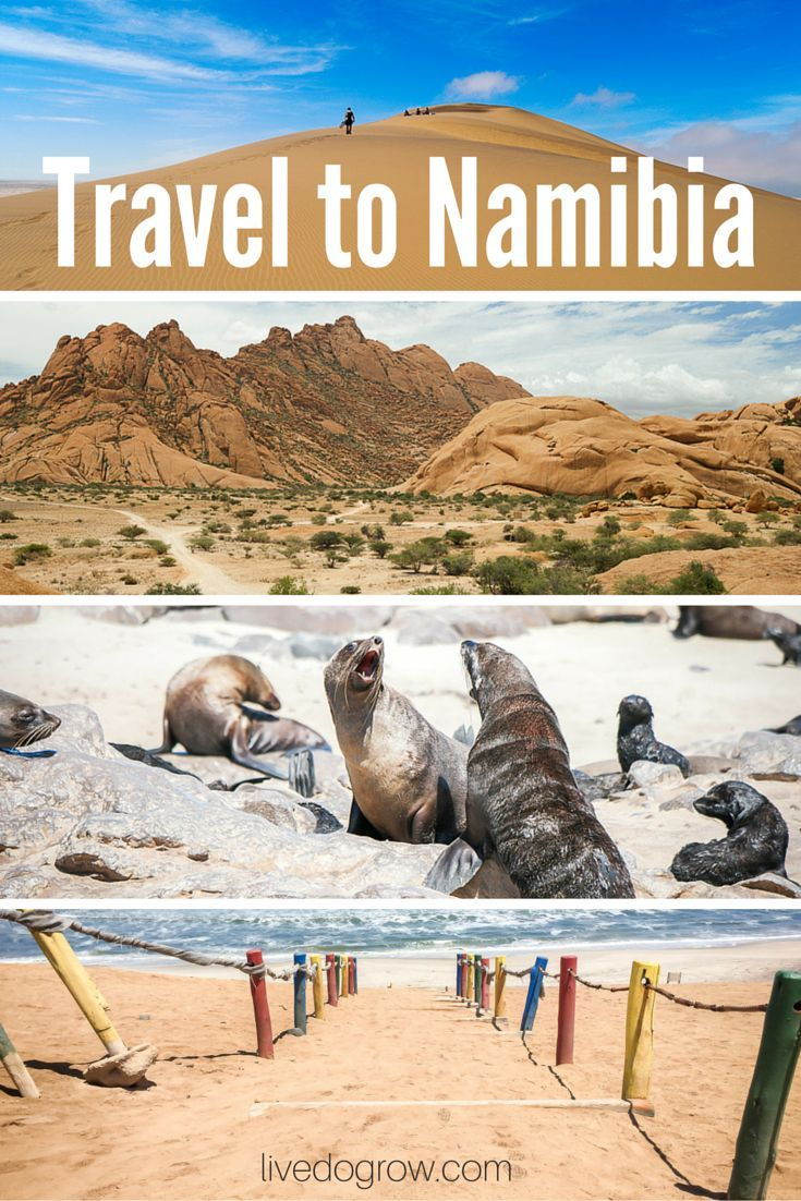 Thinking about a trip to Namibia? Here are 9 highlights from an 8-day tour of Windhoek, Swakopmund, Brandberg, Opuwo and the Skeleton Coast.