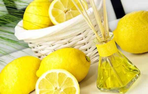 Limon İle Cilt Bakımı Limon, kadınların en çok cildini parlatmak için kullandığı bir gıda ürünüdür. Hatta mutfakta bile, salataya limon sıkıldığı zaman, elimize biraz limon bulaşır fakat elimizi yıkamadan, elimize yedirmeye çalışırız. Bu şekilde limon ile cildiniz parlasın diye yapılır ya da öyle söylenmiştir. Elbette sadece birkaç kez yaparak sonucu göremezsiniz ama limon, cilt için …