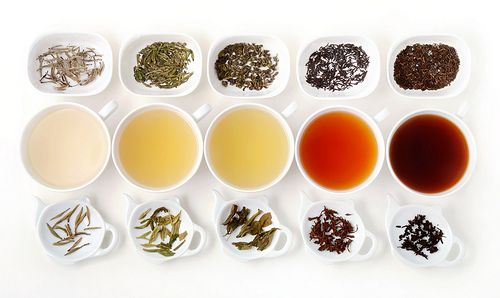 Which Type of Tea Stains Teeth the Most | Tea Processing & Stained Teeth