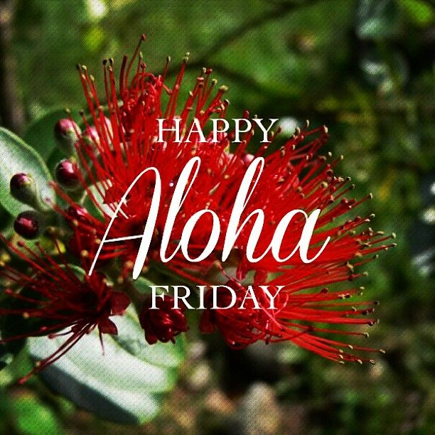 Happy Aloha Friday from PIpeline Clothes & Gear.