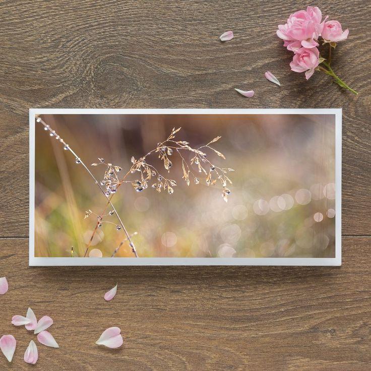 Single Blank Card by landscape photographer Nina K Claridge –  Dewy Grass