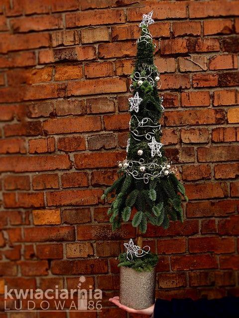 Kwiaciarnia Częstochowa - LUDOWA 86 - bukiety, dekoracje, kwiaty: dekoracje świąteczne