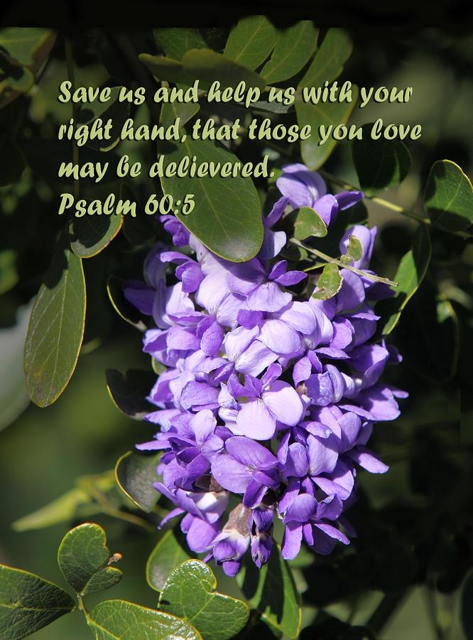 Psalm 60:5