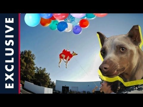 Sheckler Sessions - World's 1st Flying Dog & Fantasy Factory fun - Episode 4