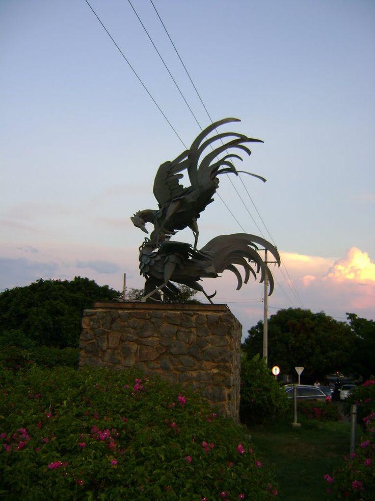 #Gallos#DePelea realizada por la escultora Elma pignalosa, hecha de hierro, bronce y laminas de alumino, referente de la simpatia y popularidad que los galleros tienen en la región