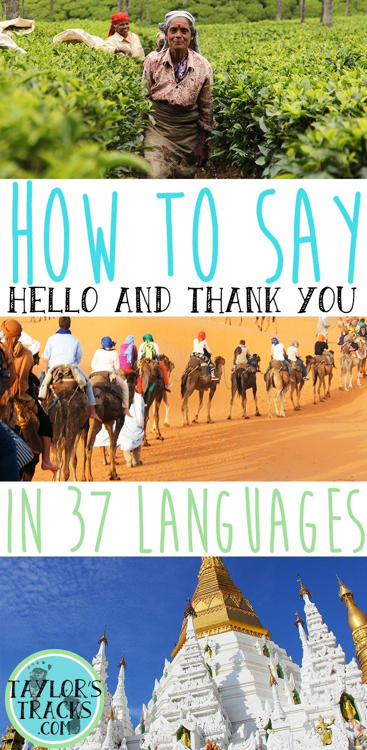 Make a local's day by communicating with them in their mother tongue. Learn two basic works before you travel! ******************************************** Travel tips | Travel tips and tricks | Languages | Languages learning | Languages | Languages to learn | How to say hello in different languages | How to say thank you | Different languages | Languages from around the world
