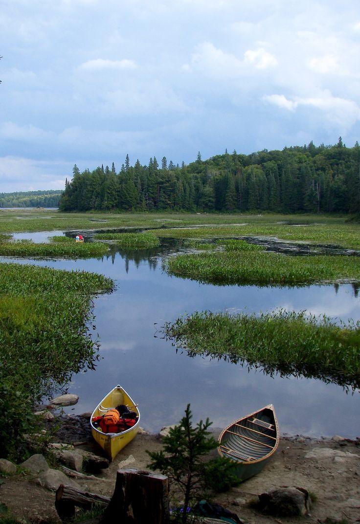 canoeing in algonquin park, ontario.