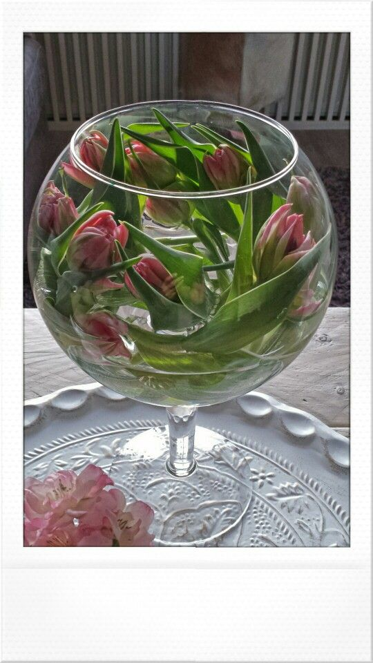Decoratieve Tulpen in bolvormige vaas! laat ze eerst een paar uur liggen zonder water dan worden ze slap en kun je ze vormen in de vaas of schaal!