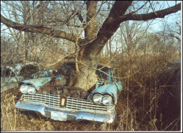 1959 Plymouth..0, Tree 1