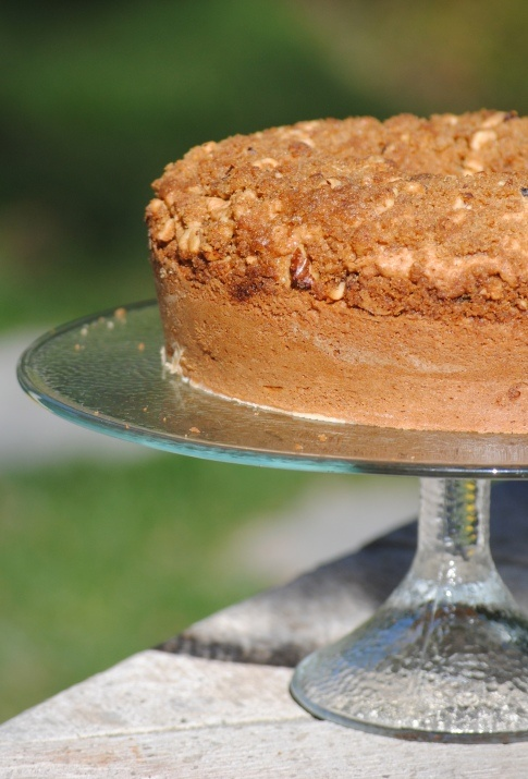 apple sour cream cake with spelt recipes dishmaps cinnamon apple sour ...