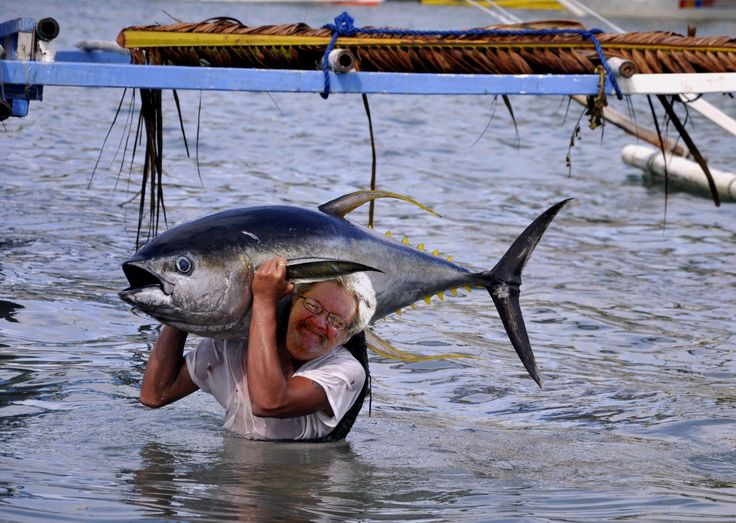 Here I am catching tuna bare handed, let's see Babe Winkelman do that!