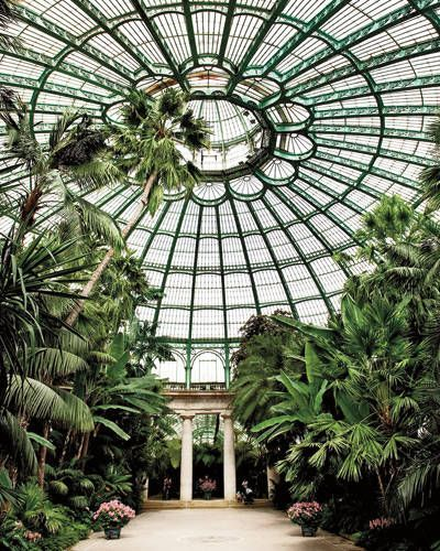 The Royal Greenhouse - a surprising place to visit in Brussels from Elle Decor.
