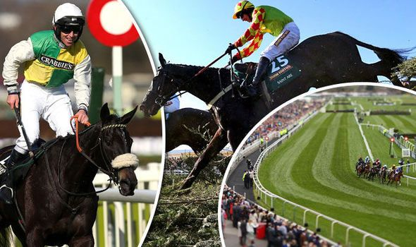 Grand National 2016: Betting tips and complete guide to every Aintree horse by our expert