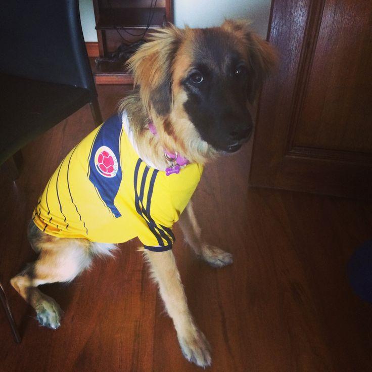 Lupe con la camiseta de Colombia