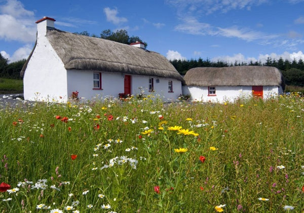 Irish cottage beautiful buildings cottages pinterest for Beautiful cottages pictures