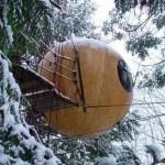 Free Spirit Spheres TreehousesTreehouse Architecture, British Columbia Canada, Vancouver Islands, Favorite Places, Tree Houses, Trees House, Spirit Sphere, Free Spirit, Modern Design