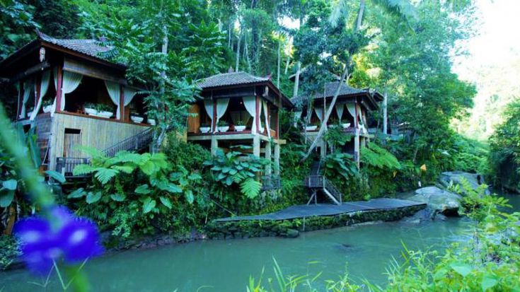 16 Stylish Affordable Hotels In Central Bali Under 50 With