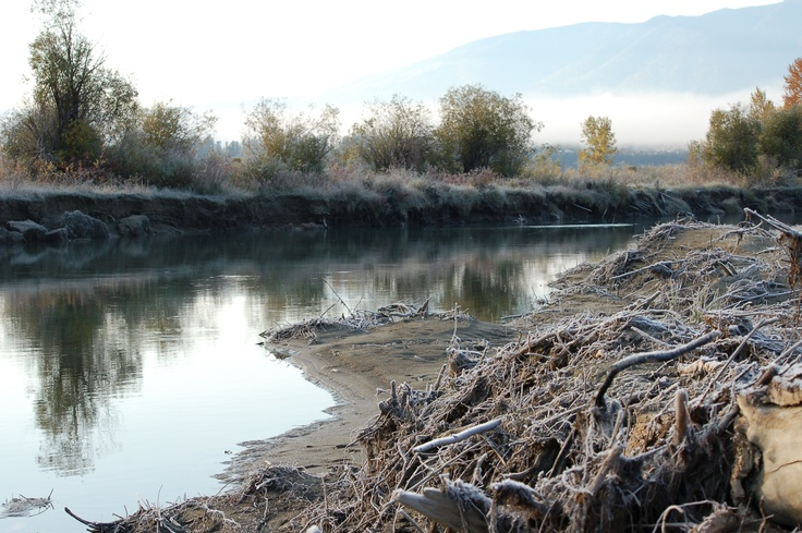 Just above the confluence of toby creek to the Great columbia river.