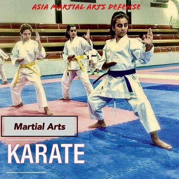 نادي كاراتيه Karate Martial Arts Martial