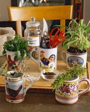 I think I may do this for my herbs...I have way too many coffee mugs anyways