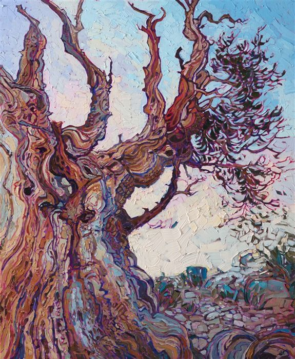 Methusela Bristlecone Pine Forest Oil Painting By Erin Hanson