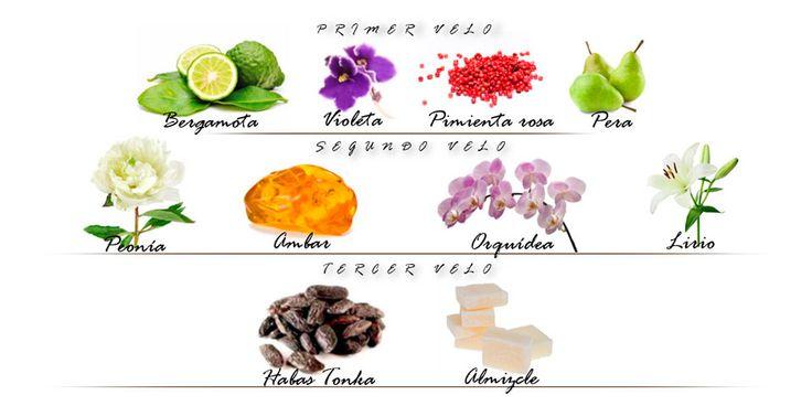 Descubre el perfume Sensai the Silk, la primera fragancia de la marca, especialmente diseñado para los amantes de Sensai.