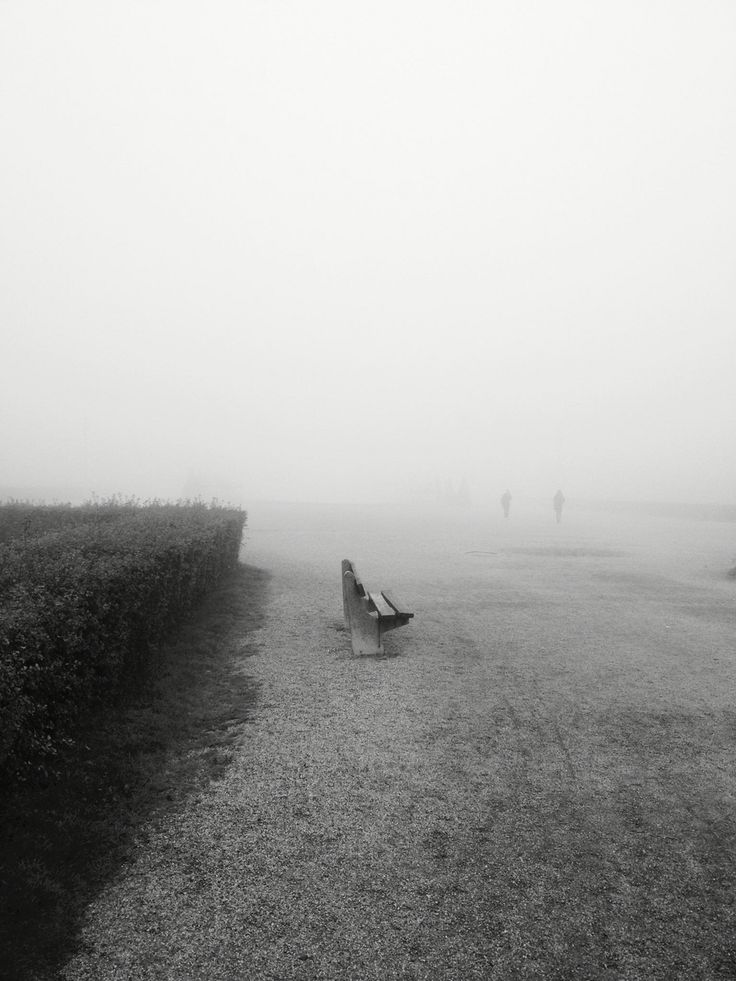 Bench in the fog in Debrecen, Hungary