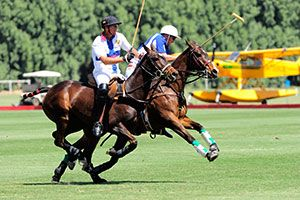Join us for some of the most exciting and competitive polo in the country! The Club boasts 10 regulation grass fields, stick and ball field, practice hitting cage, exercise track and stabling for over 400 horses. A great sense of community fills the air at Eldorado with all facilities located onsite including a tack store and fieldside Cantina which is a popular place to meet for a drink after the game.