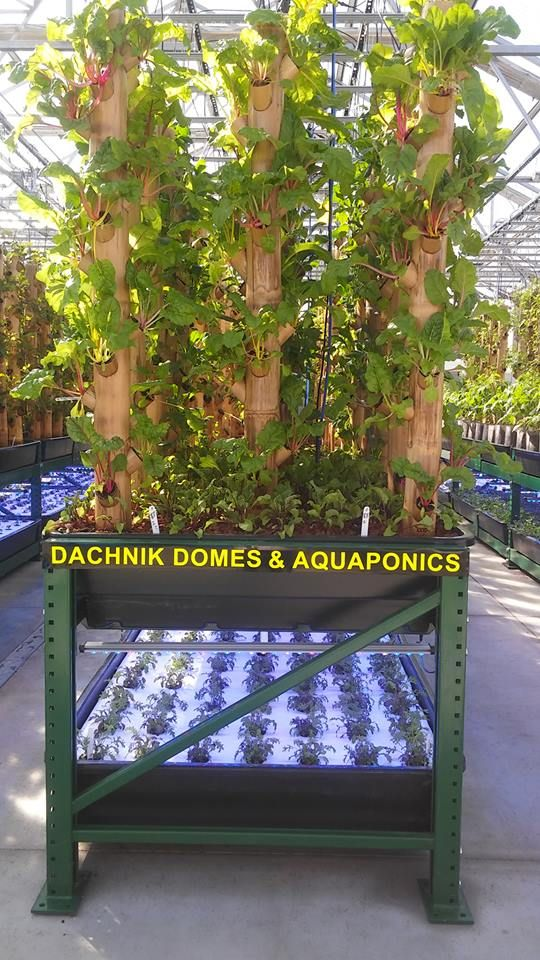 Popular Our turn key mercial Aquaponic systems are now available We uve worked extremely Landschaftsbau
