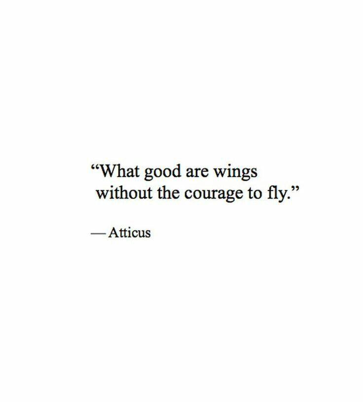 What good are wings without the courage to fly - Atticus Finch, To Kill A Mockingbird
