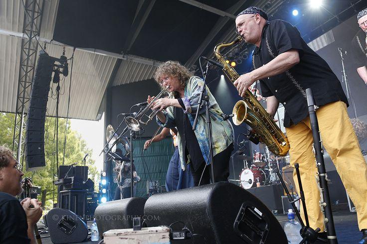 Hazmat Modine (USA) perform at WOMADNZ 2016.