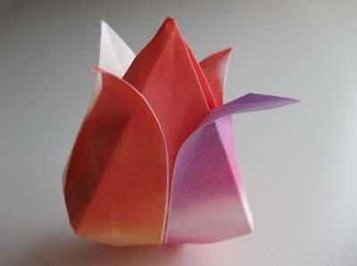 the tulip is the first origami flower i learned to make