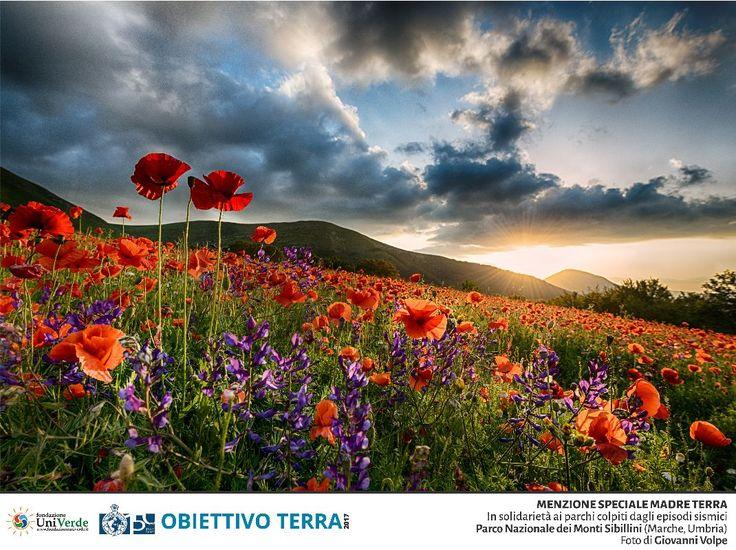 Giovanni Volpe - Menzione Speciale Madre Terra - Parco Nazionale dei Monti Sibillini (Umbria, Marche)