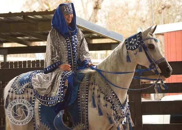 Image result for arabian horse dress