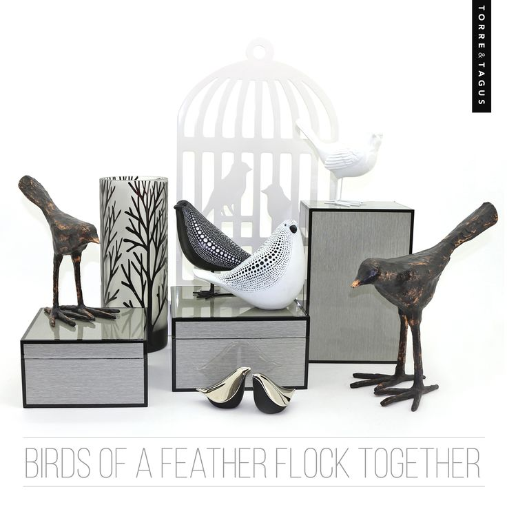 Not all birds fly south this winter! View our wide selection of unique bird accessories and add them to your home decor.  #TorreAndTagus #birdhomedecor #birddecoration #homedecor www.torretagus.com