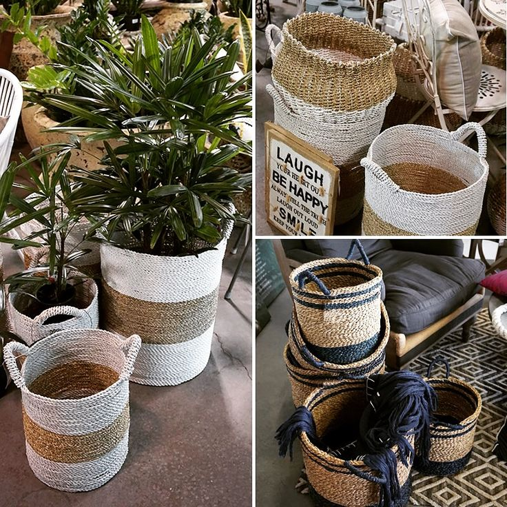 Disguise a boring plant pot by sitting it inside a beautiful basket!