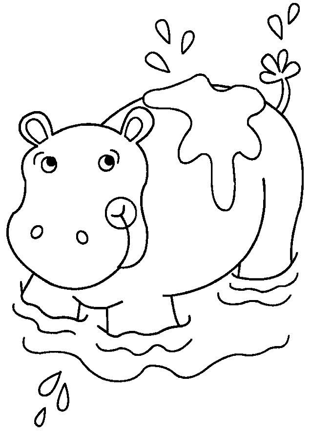 Free Printable Hippo Coloring Pages For Kids Hippo Crafts Animal Coloring Pages Coloring Pages