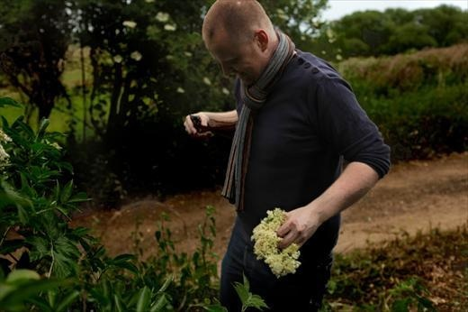 Chef Christoffer Hruskova foraging elderflowers