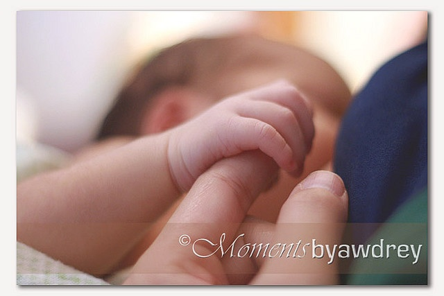 newbornNewborn Pictures, Newborn Photography, Newborns Pictures, Newborns Photos, Newborn Photos, Lifestyle Newborns, Newborns Photography, Newborn Poses, Newborns Poses