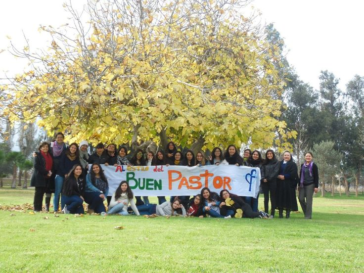 #buen #pastor #good #shepherd #jornada #vocacional