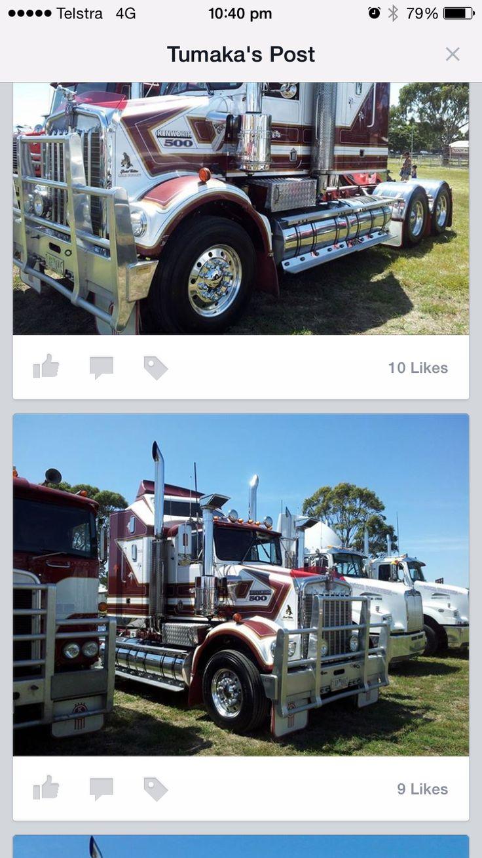 Gold bears trucks