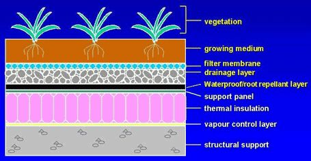 Green roofs are an effective form of stormwater management