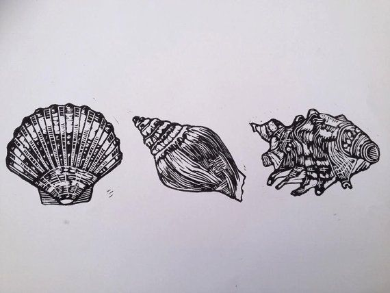 Shells linoprint